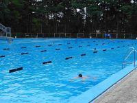 Mutige Schwimmer in den frühen Morgenstunden